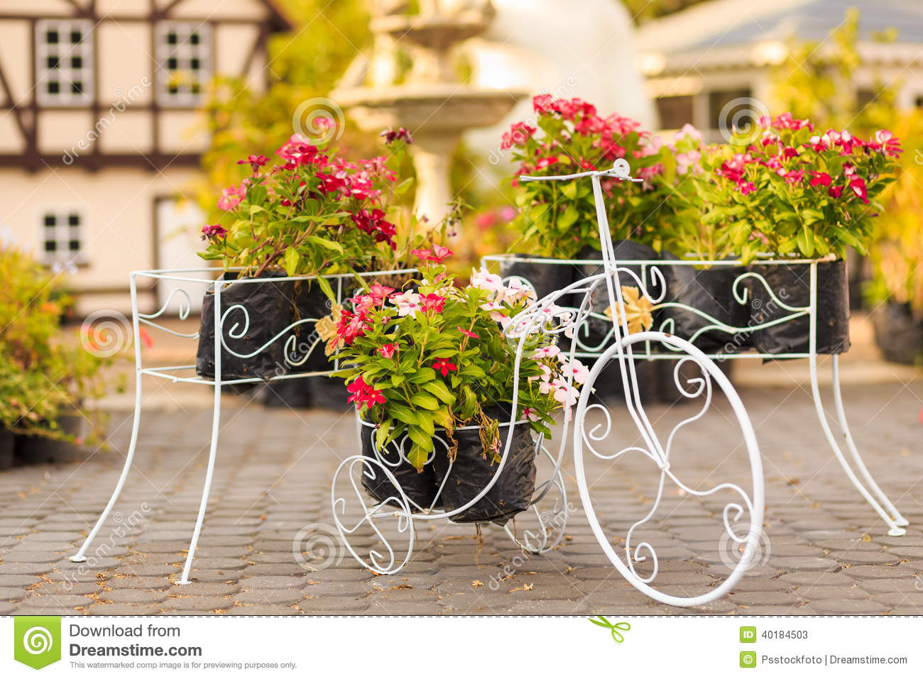 Bicycle Flower Stock Photo Image 40184503
