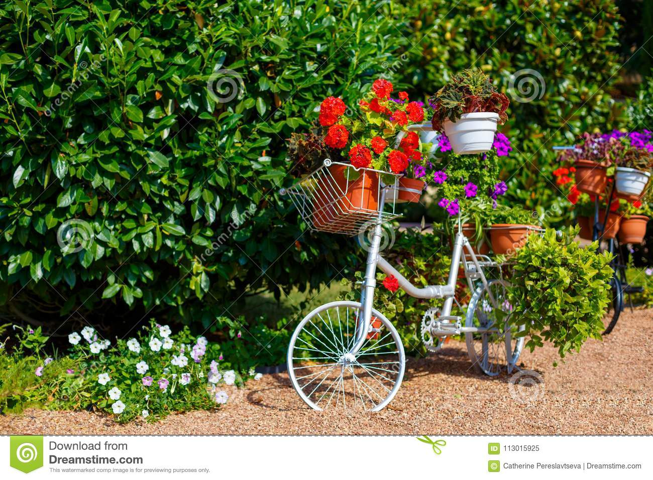 Bike With Flowers As Decor In The Park Stock Image - Image of