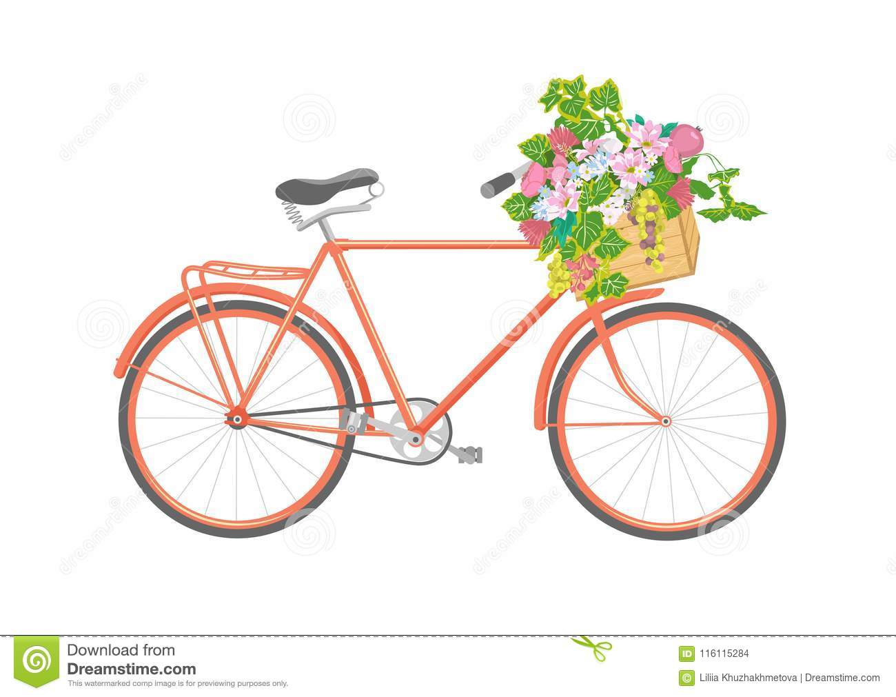 Bicycle with flowers in box. Illustration