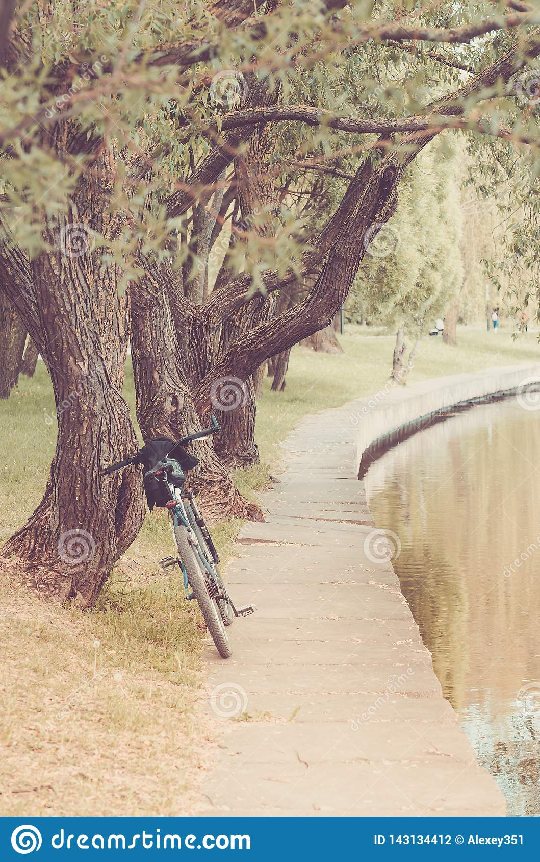 Bicycle near river in park/bicycle near river in park, toned