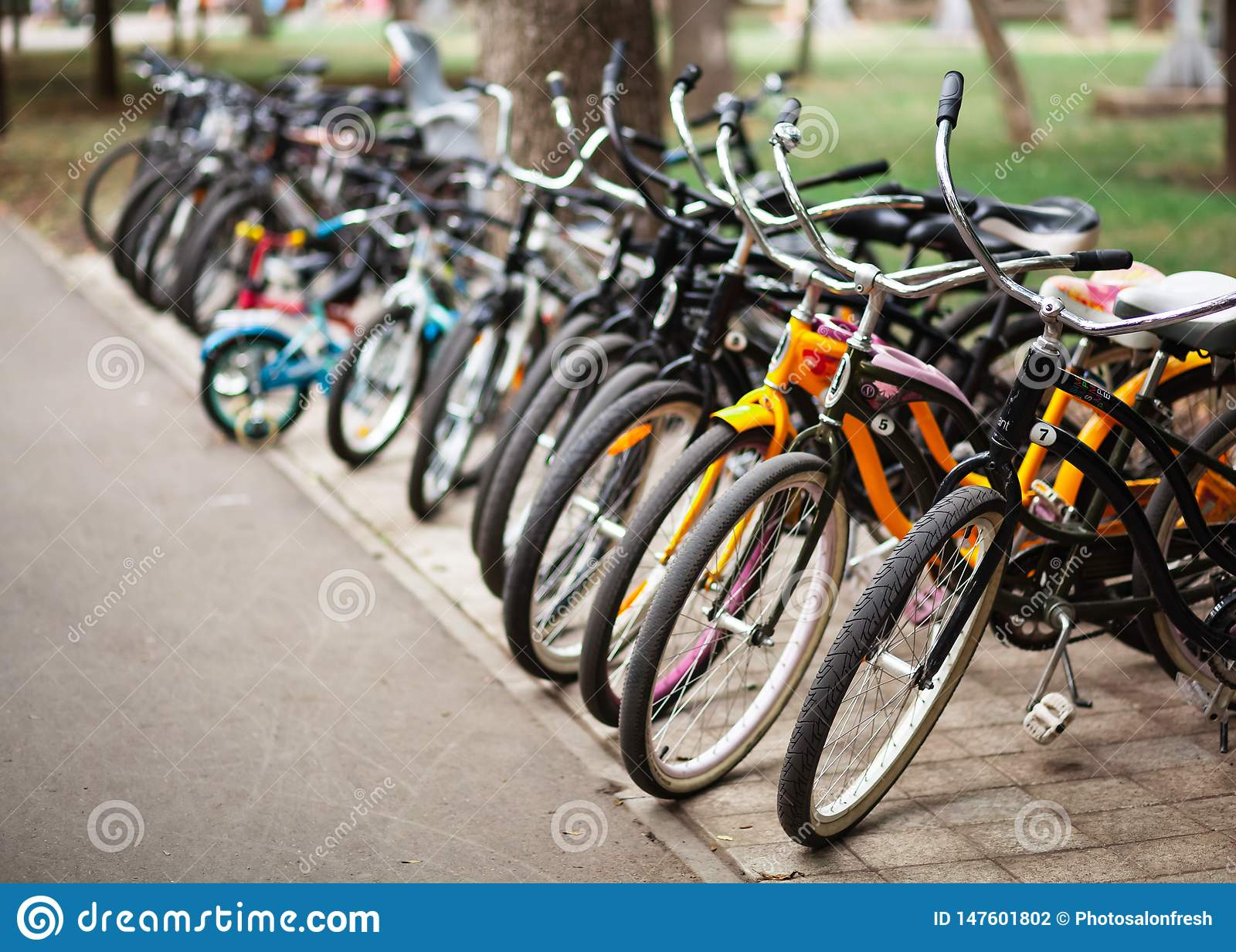 Bicycle parking in a public park