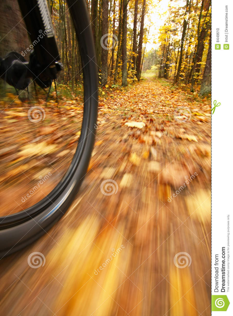 Bicycle riding, low angle motion blur
