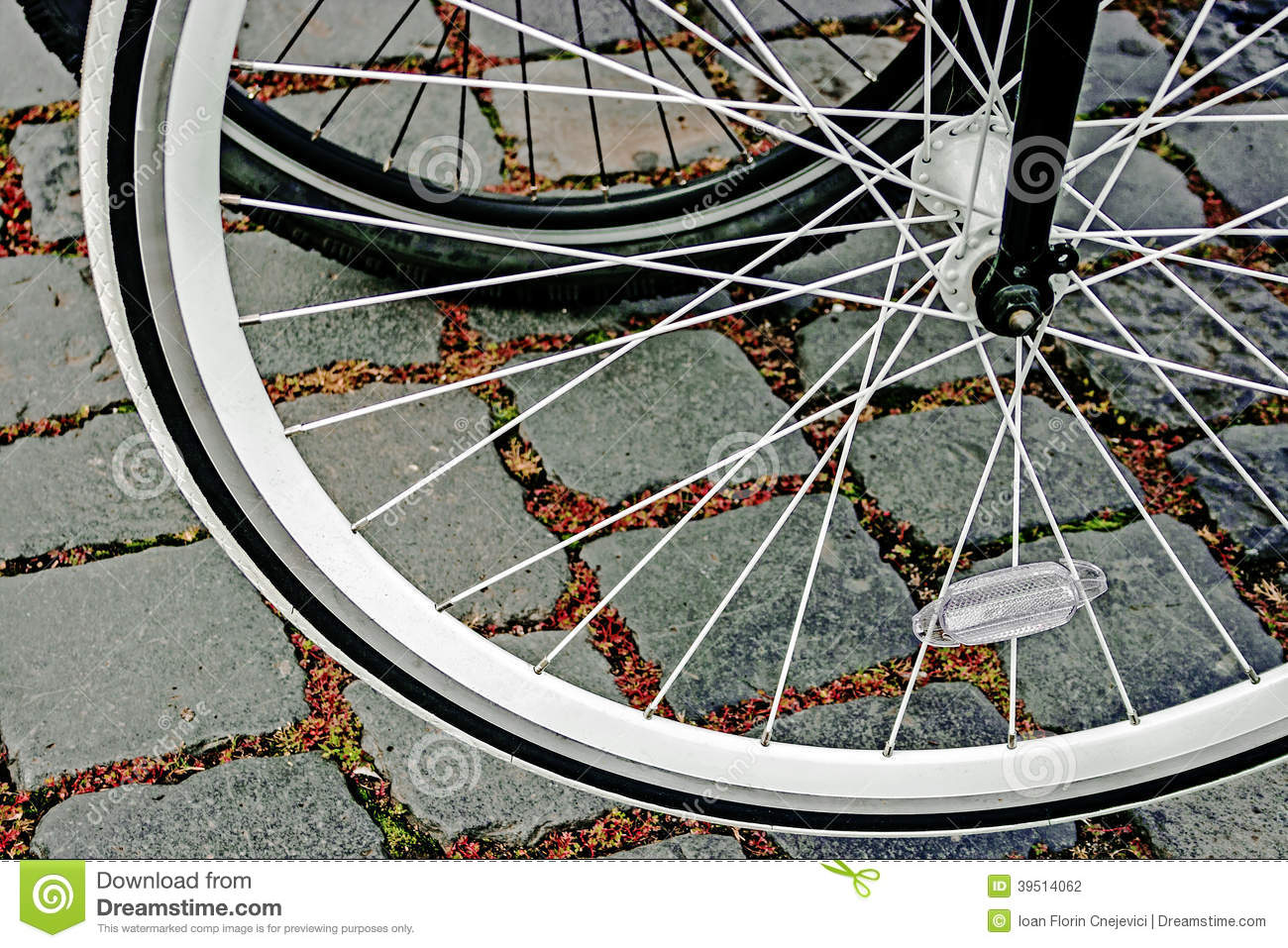 Bicycle wheel. Detail 21