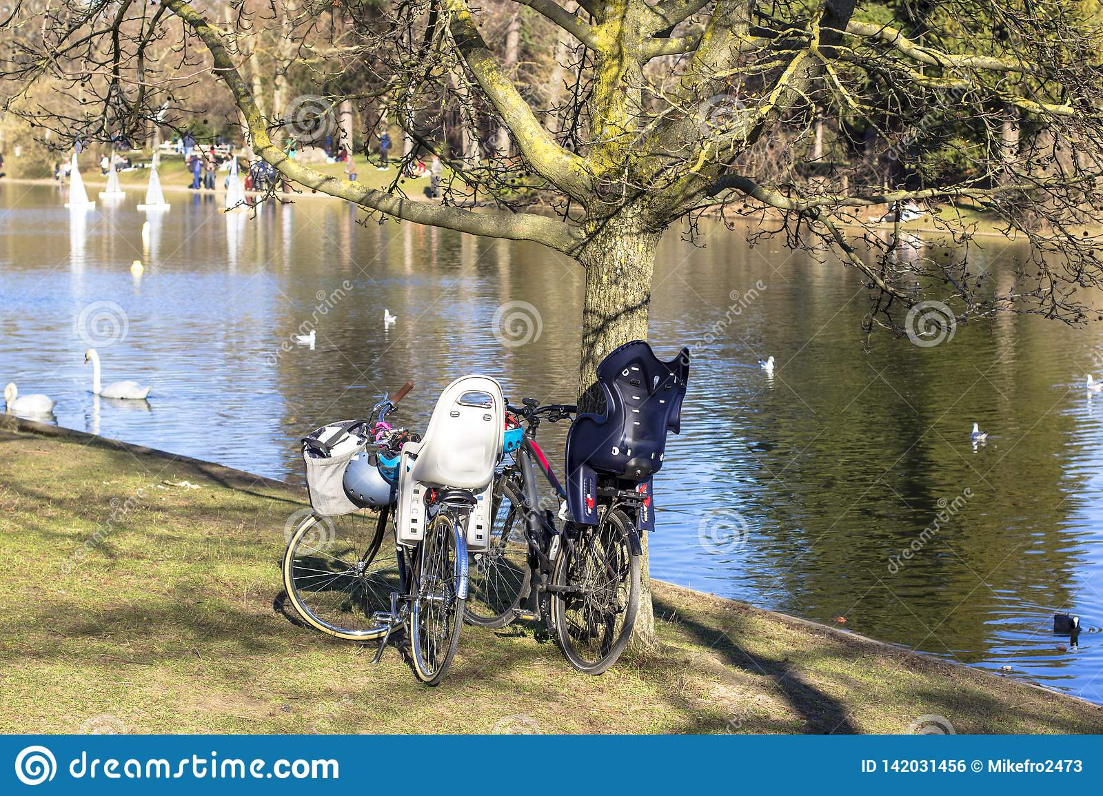 Bicycles in the park by the pond in which birds float. People on the other side launch model sailboats