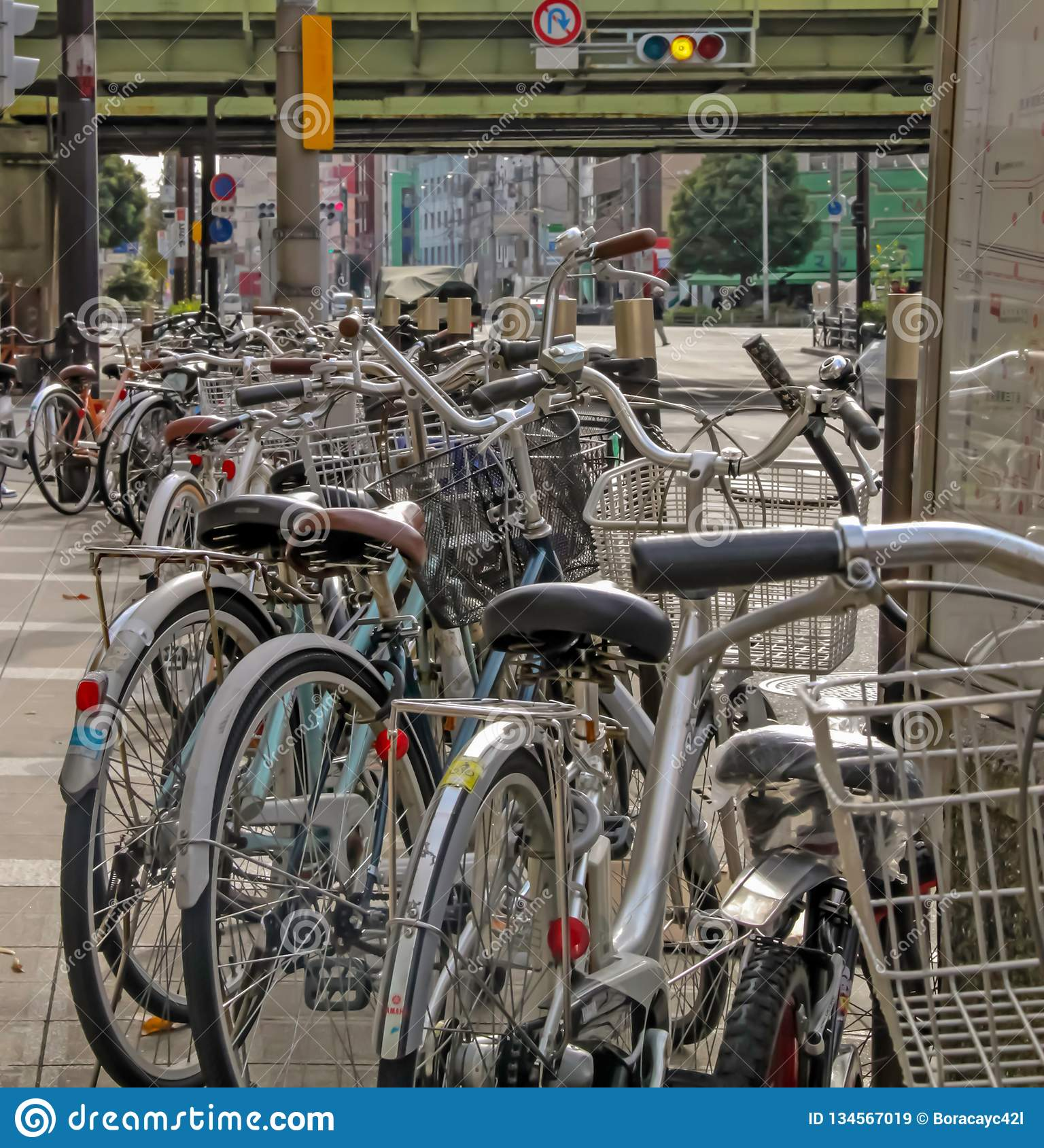 Bicycles parked along side of pathway