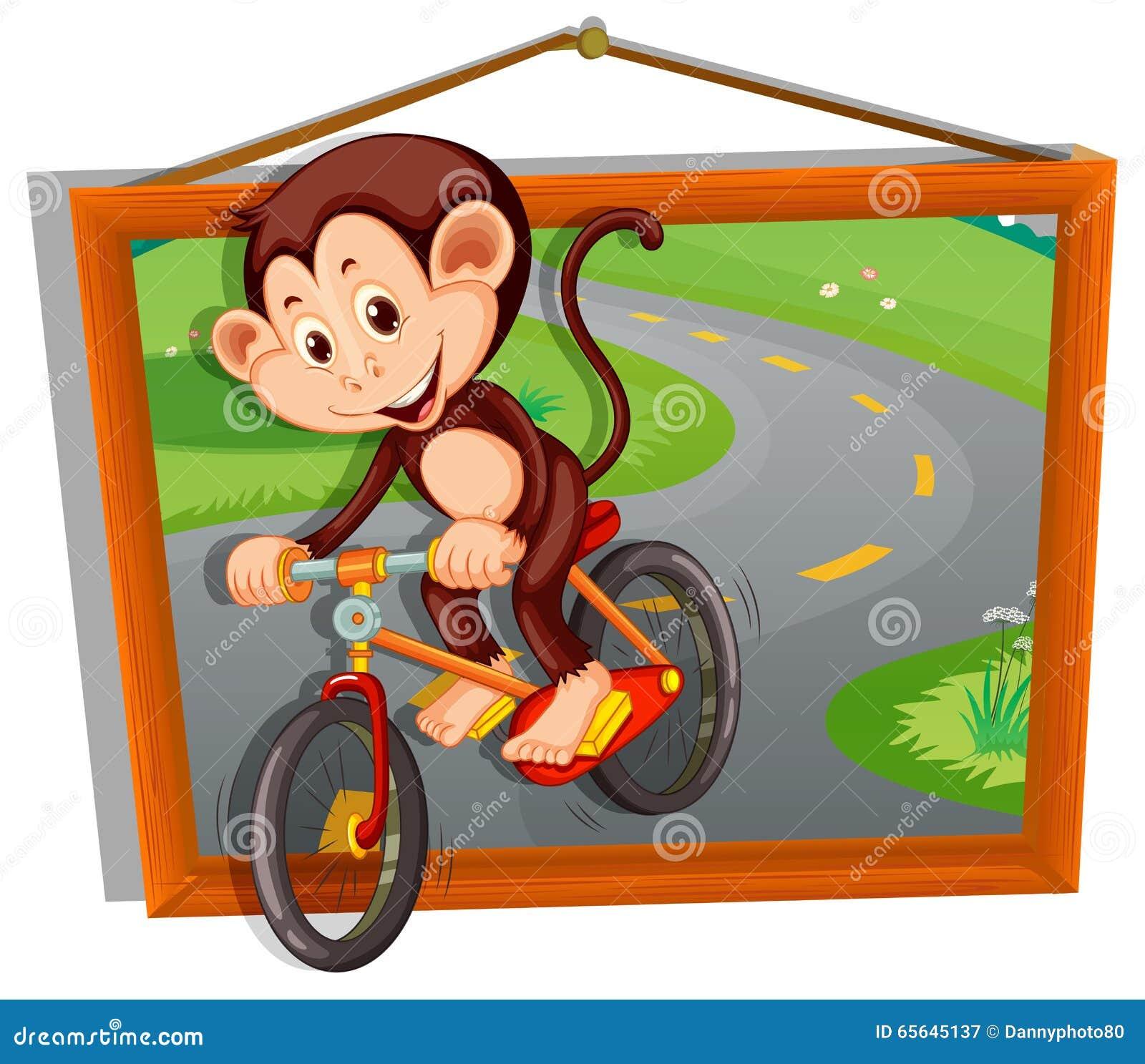 Bicyclette d équitation de singe sur la route