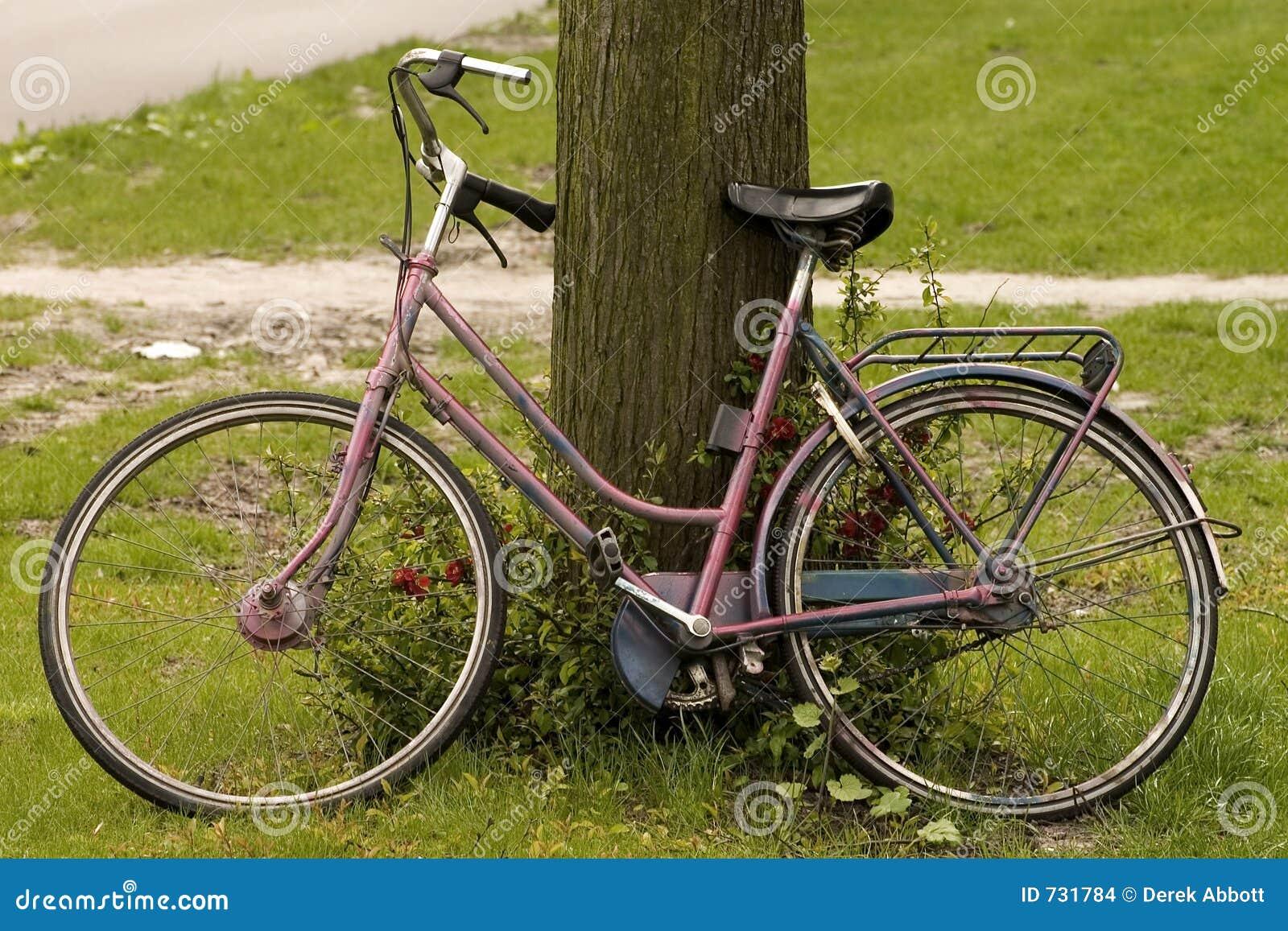 Bicyclette fanée