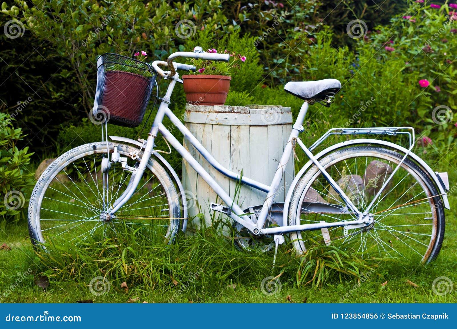 Bicyclette Ou Vélo Blanche Comme Décoration De Jardin Photo ...