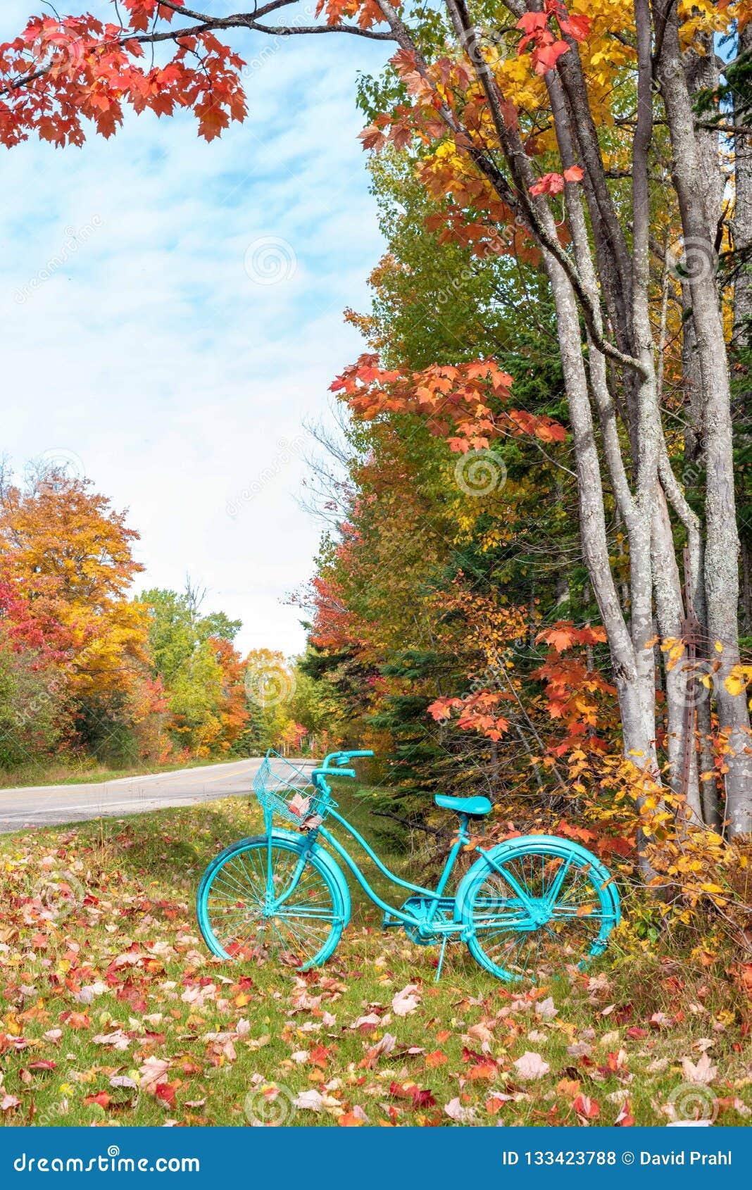 Bicyclette peinte par cru en automne