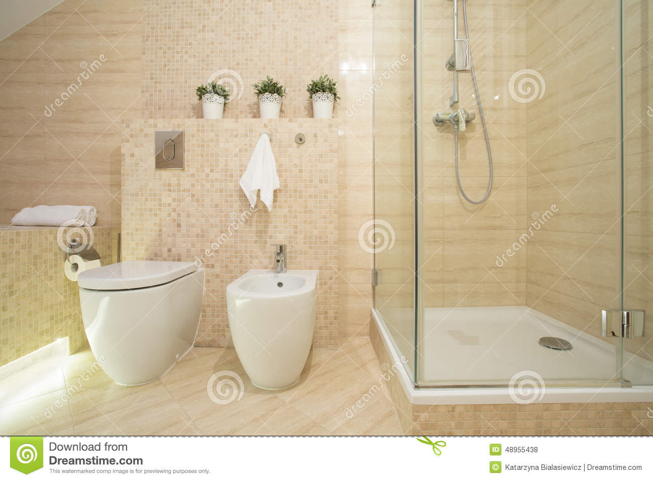 Bidet, Toilet And Shower