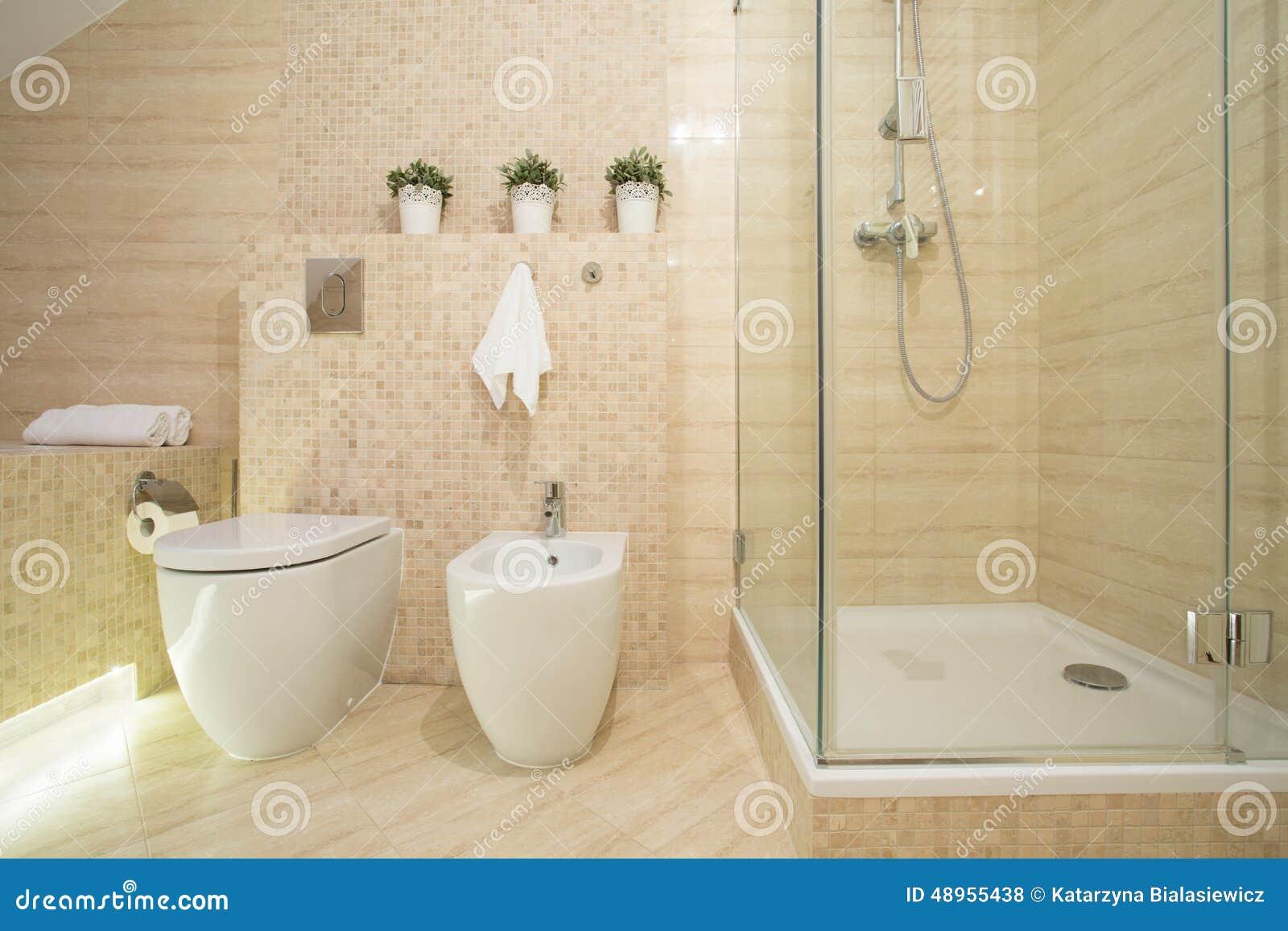 bidet toilet and shower stock photo image 48955438. Black Bedroom Furniture Sets. Home Design Ideas