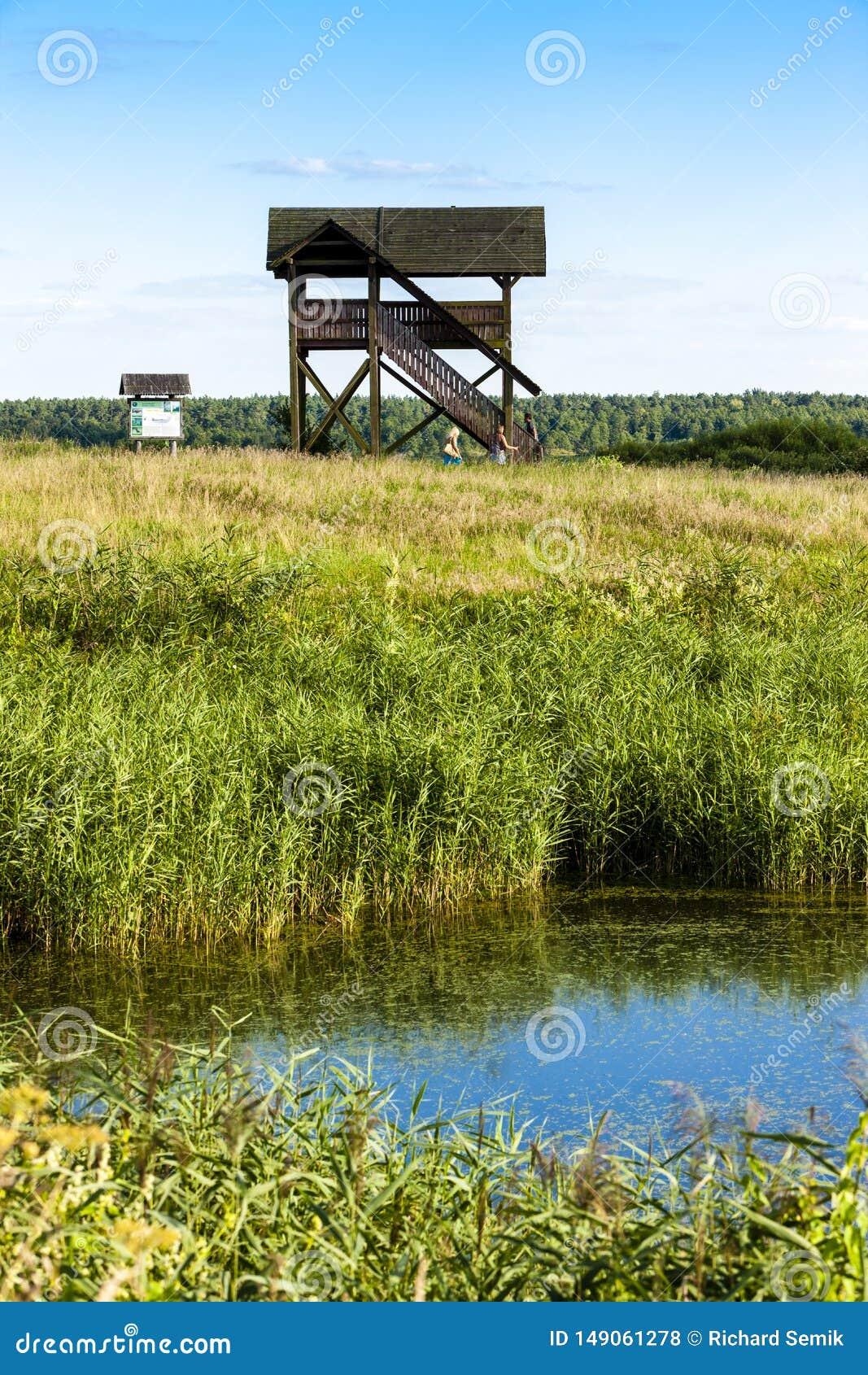 Biebrza nationalpark, Podlaskie Voivodeship, Polen