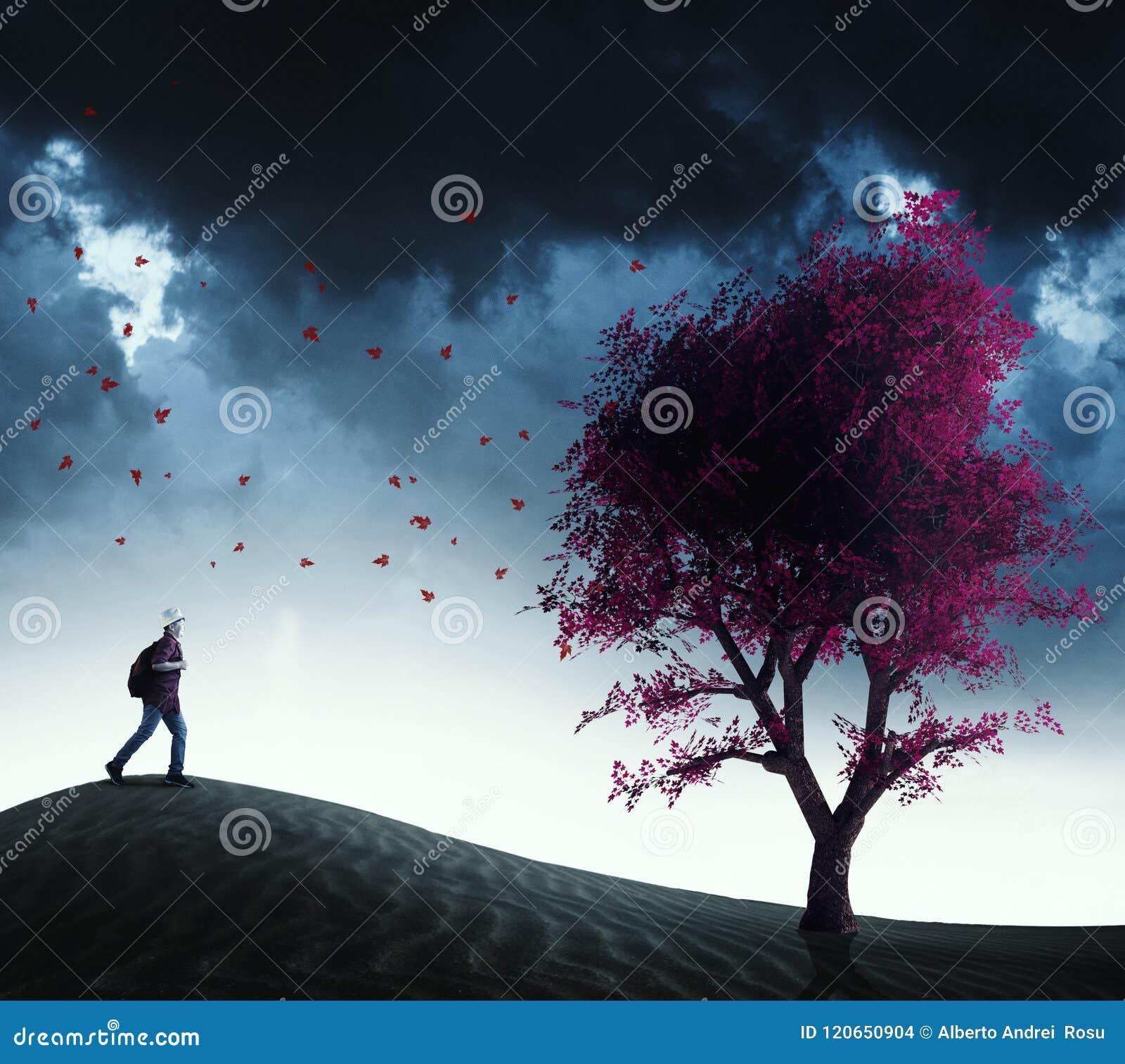 Biegać czerwony drzewo