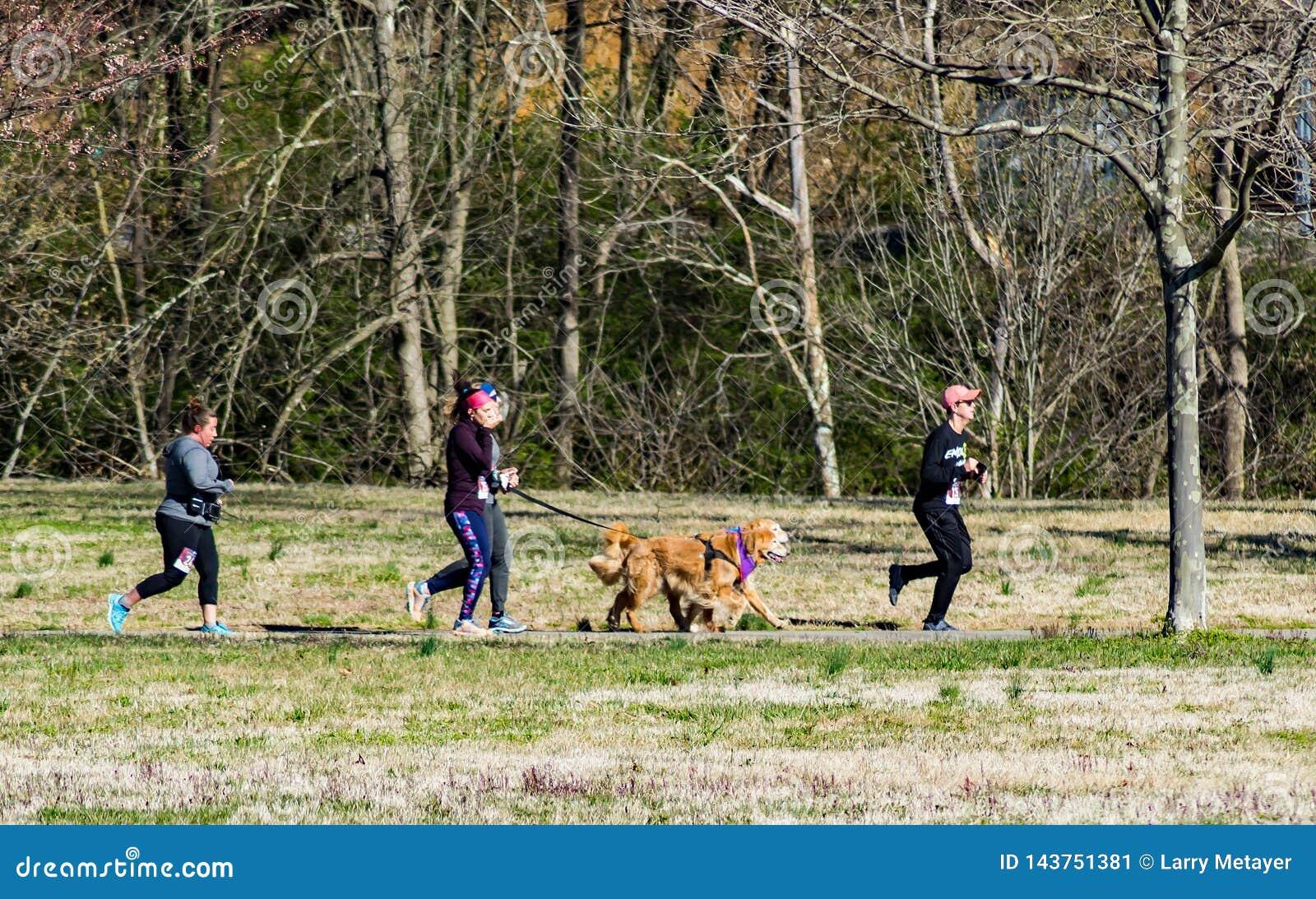 Biegacze Z Ich psami