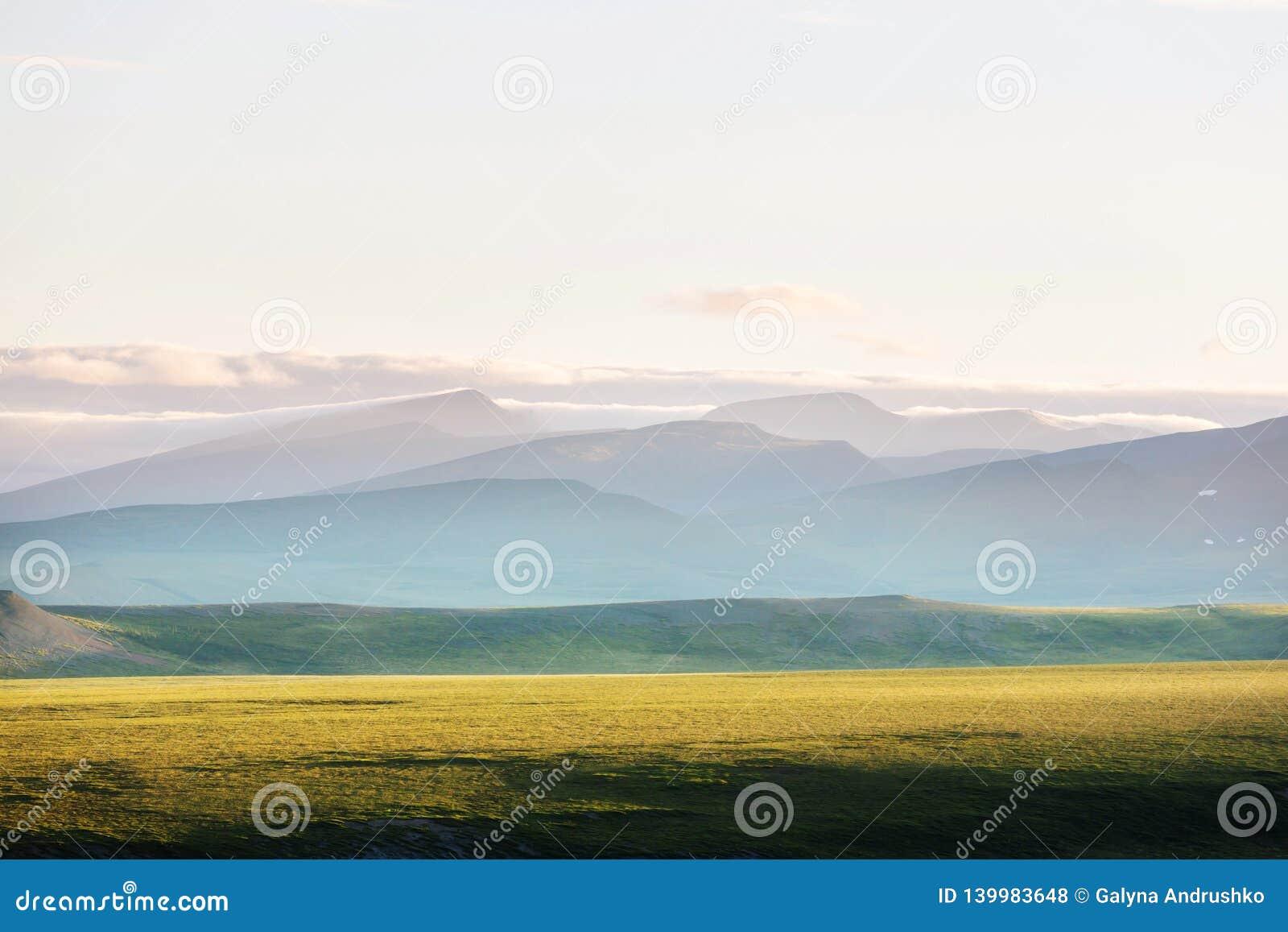Biegunowa tundra