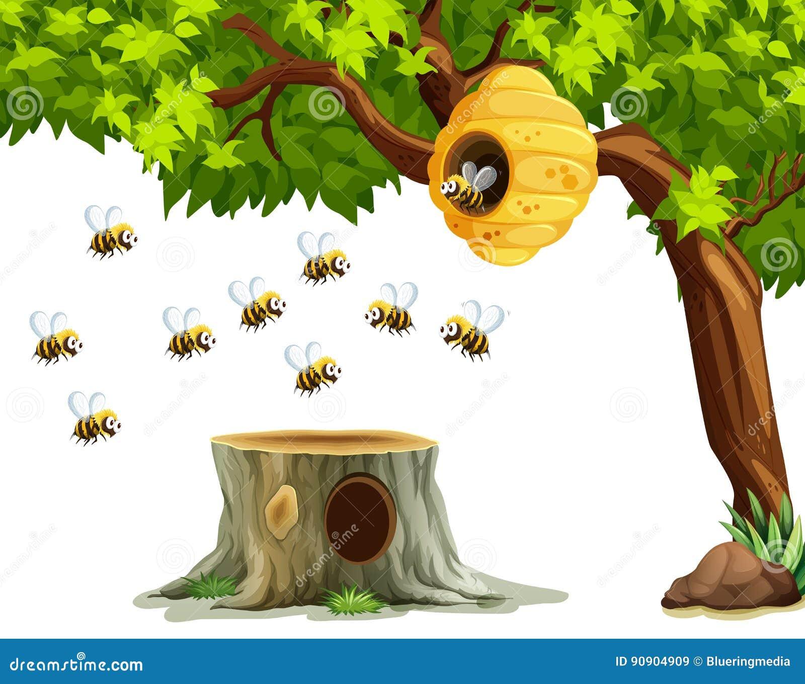 Bienen, die um Bienenstock auf dem Baum fliegen