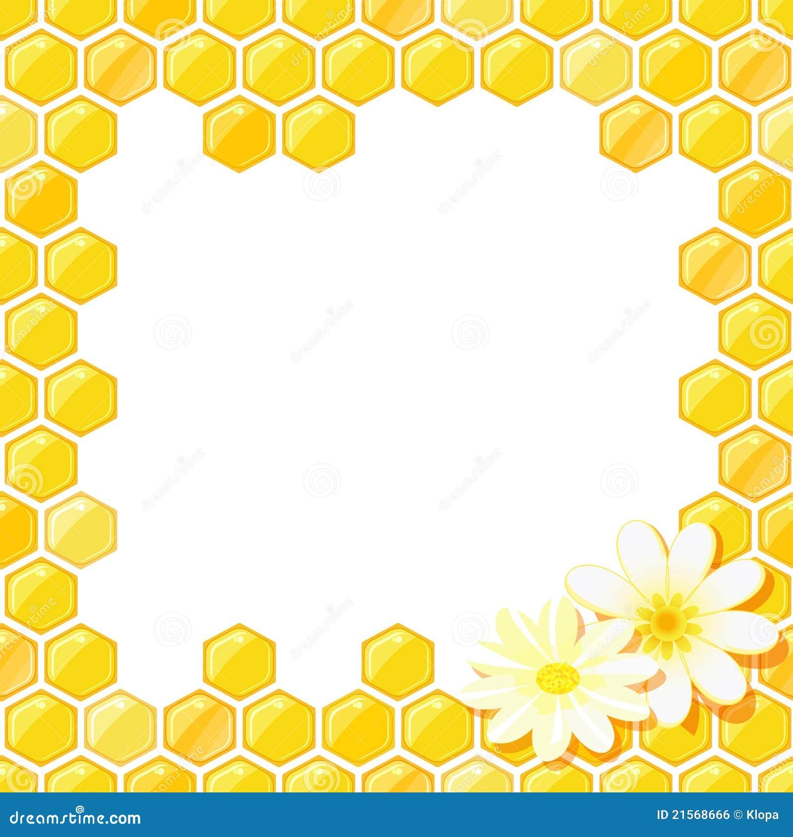 Bienenwabe-Feld Mit Blume Lizenzfreies Stockbild - Bild ...