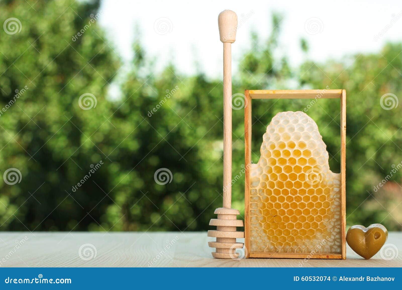 Bienenwabe Und Der Honigstab