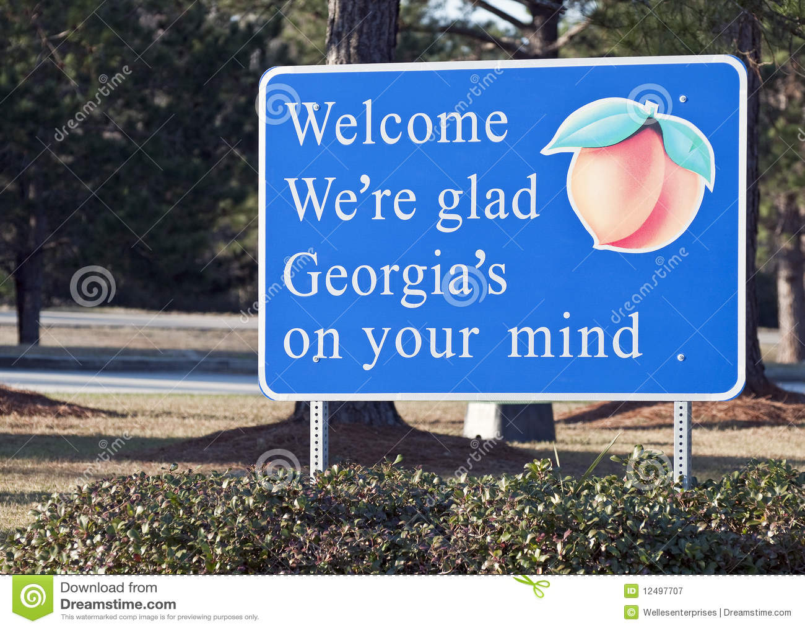 Bienvenue vers la Géorgie
