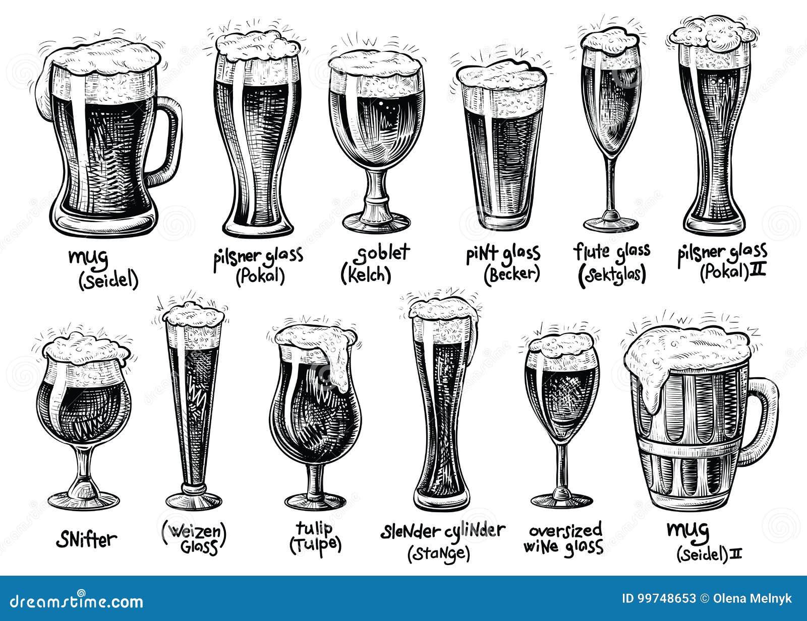 Bierglas en mokkentypes Vectorhand getrokken uitstekende illustraties