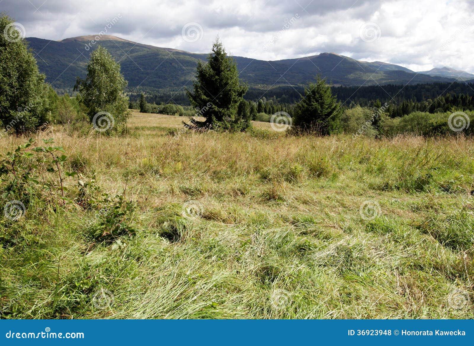 Bieszczady góry, Polska