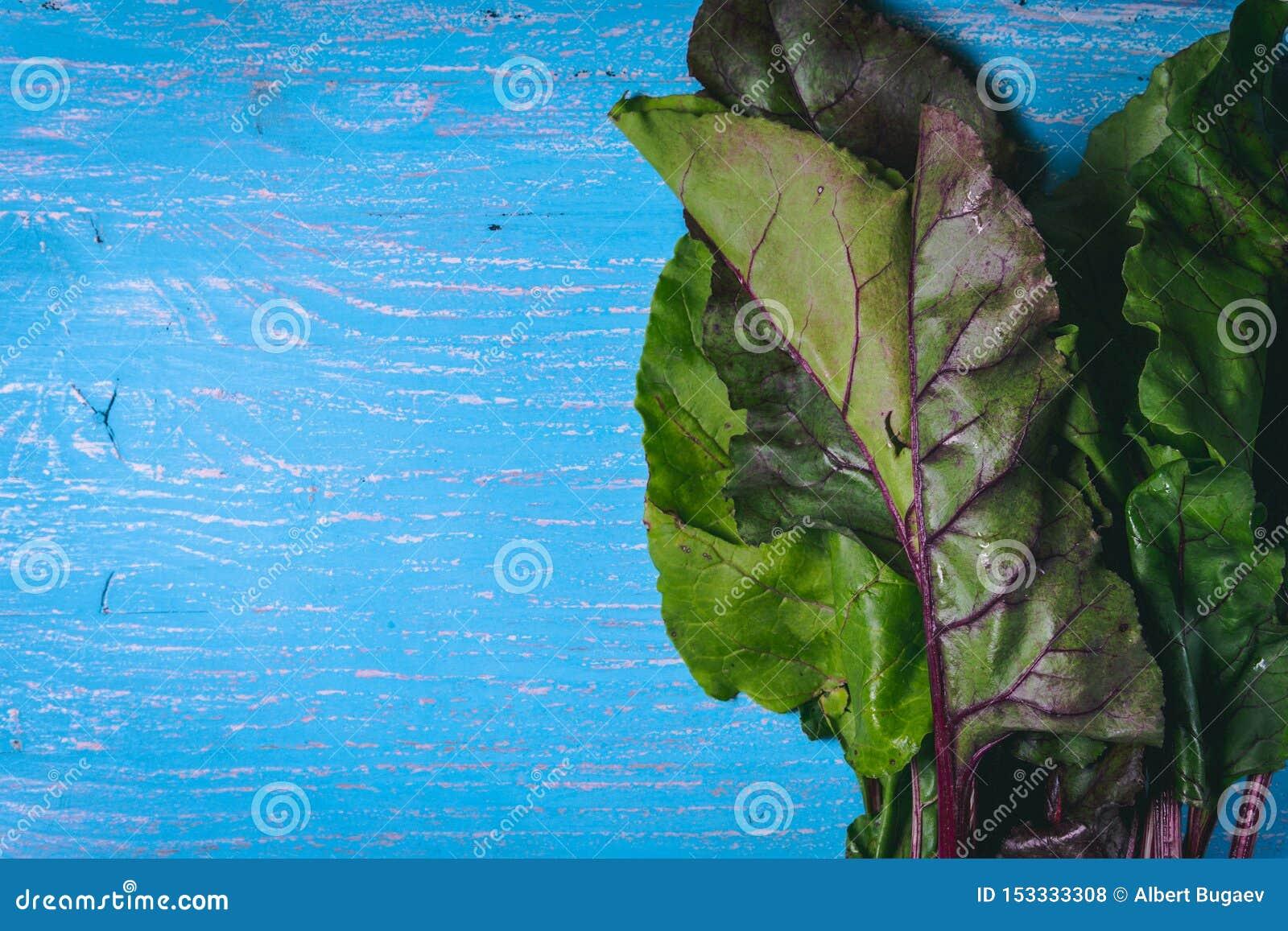 Bietenbovenkanten op oude blauwe houten lijst De ruimte van het exemplaar Gezond voedsel Rauwe groenten