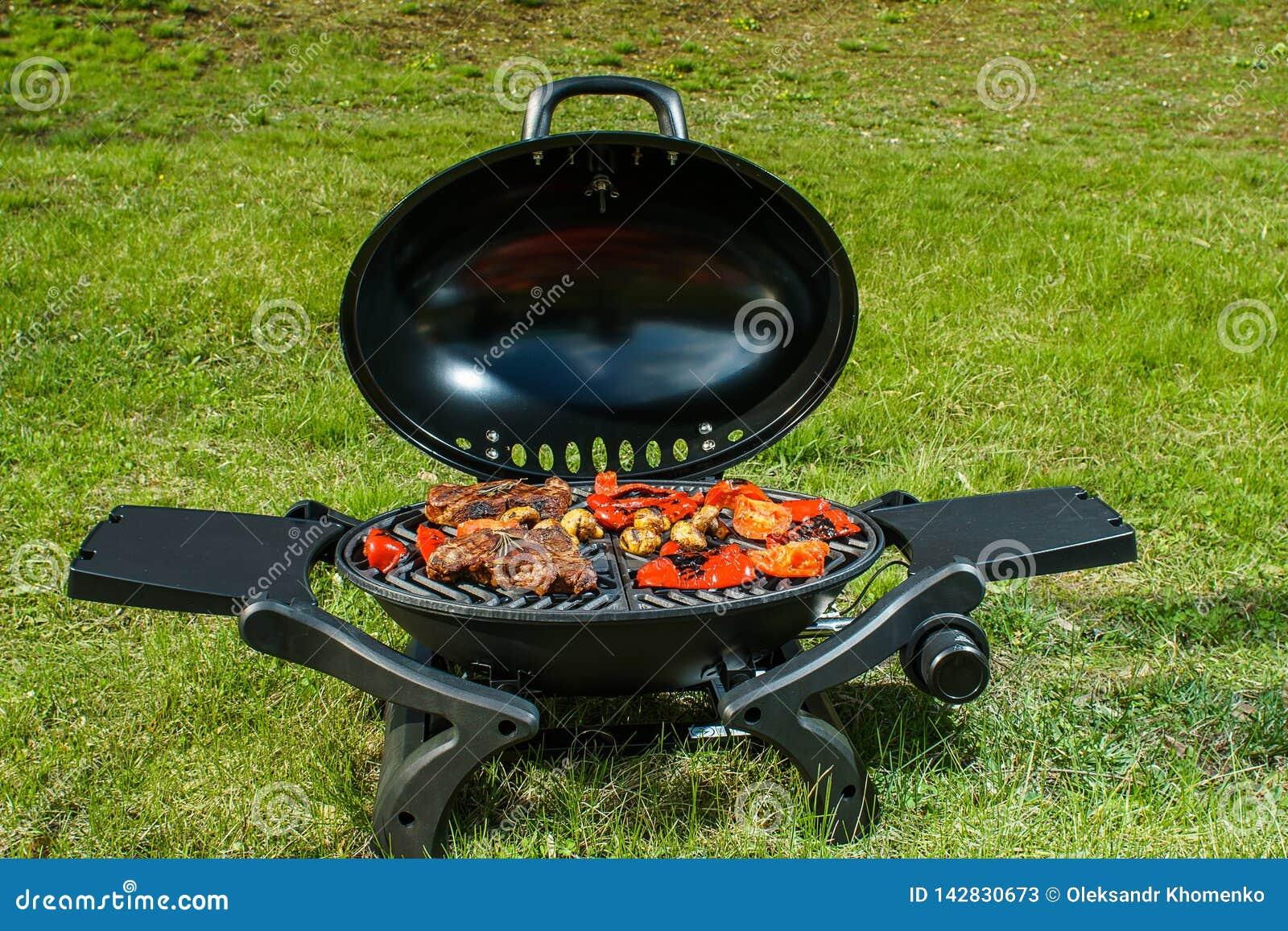 Bife e vegetais grelhados na natureza