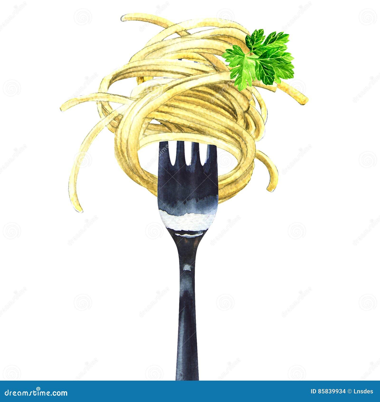 Bifurque con los espaguetis, tallarines, pastas, perejil verde, aislado, ejemplo de la acuarela