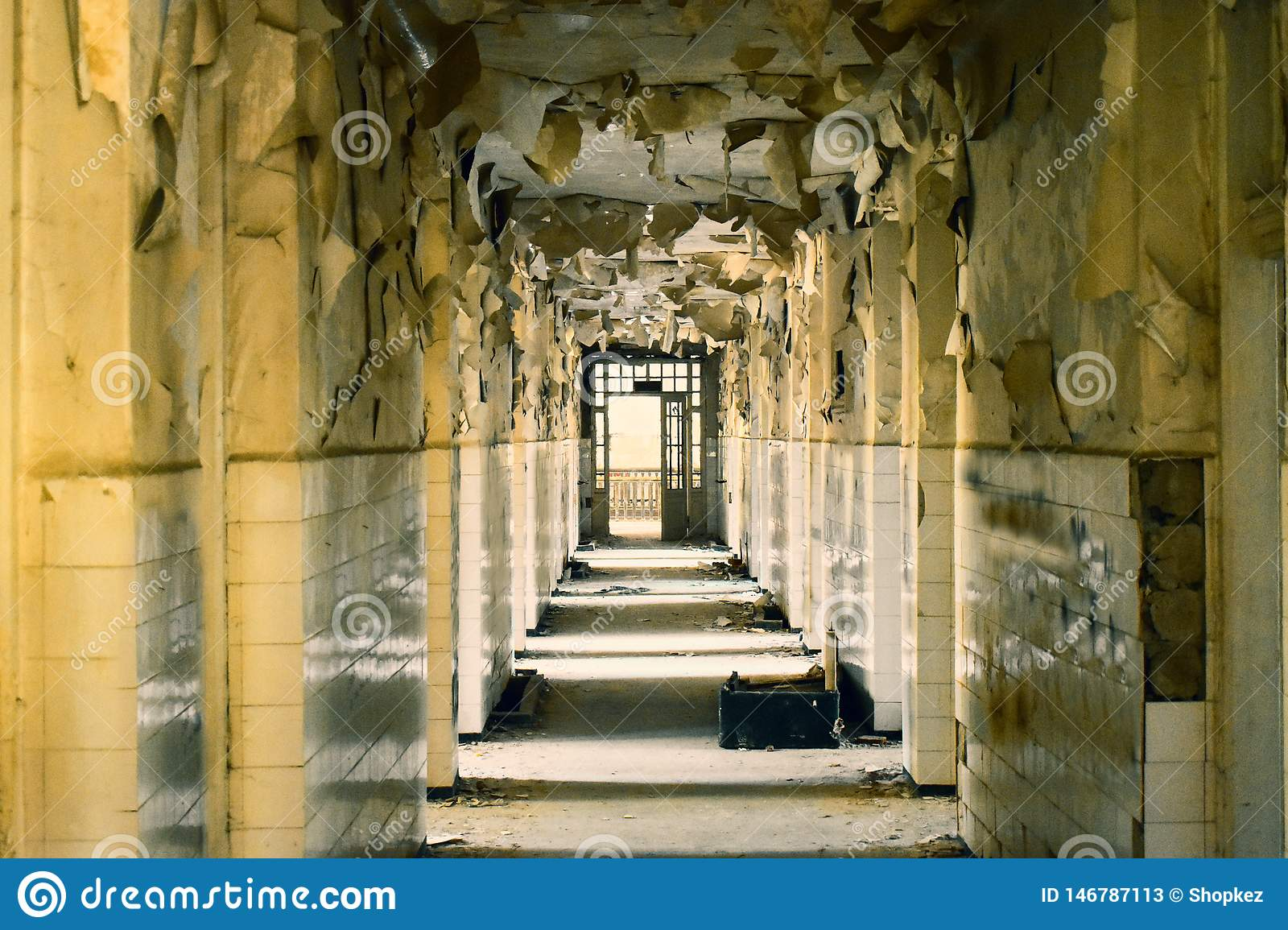 Big abandoned corridor with big broken windows and exfoliate walls in the asylum