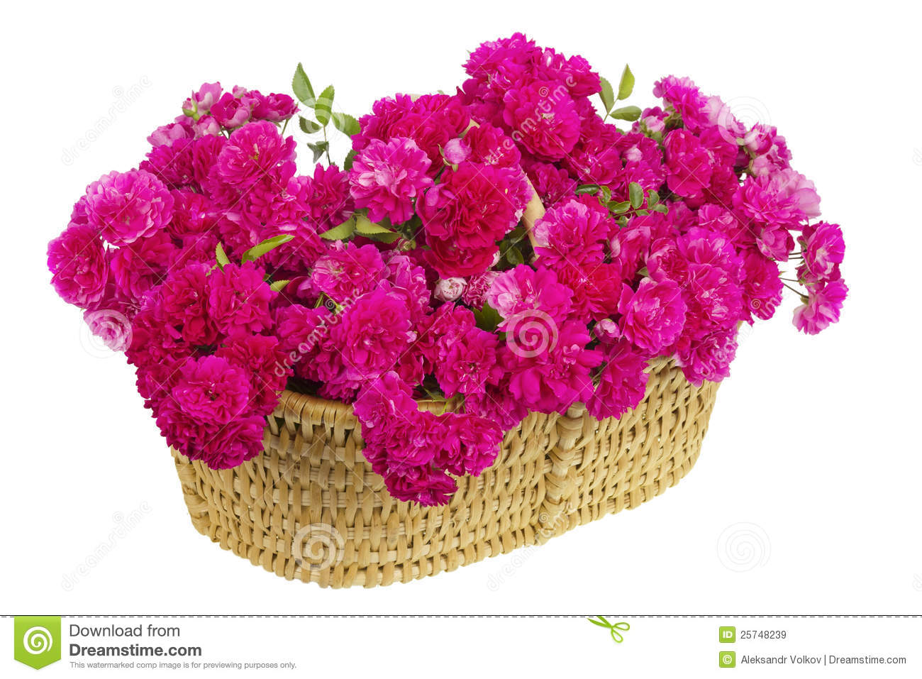 Big basket with huge bouquet of pink roses stock image for Big bouquets of flowers