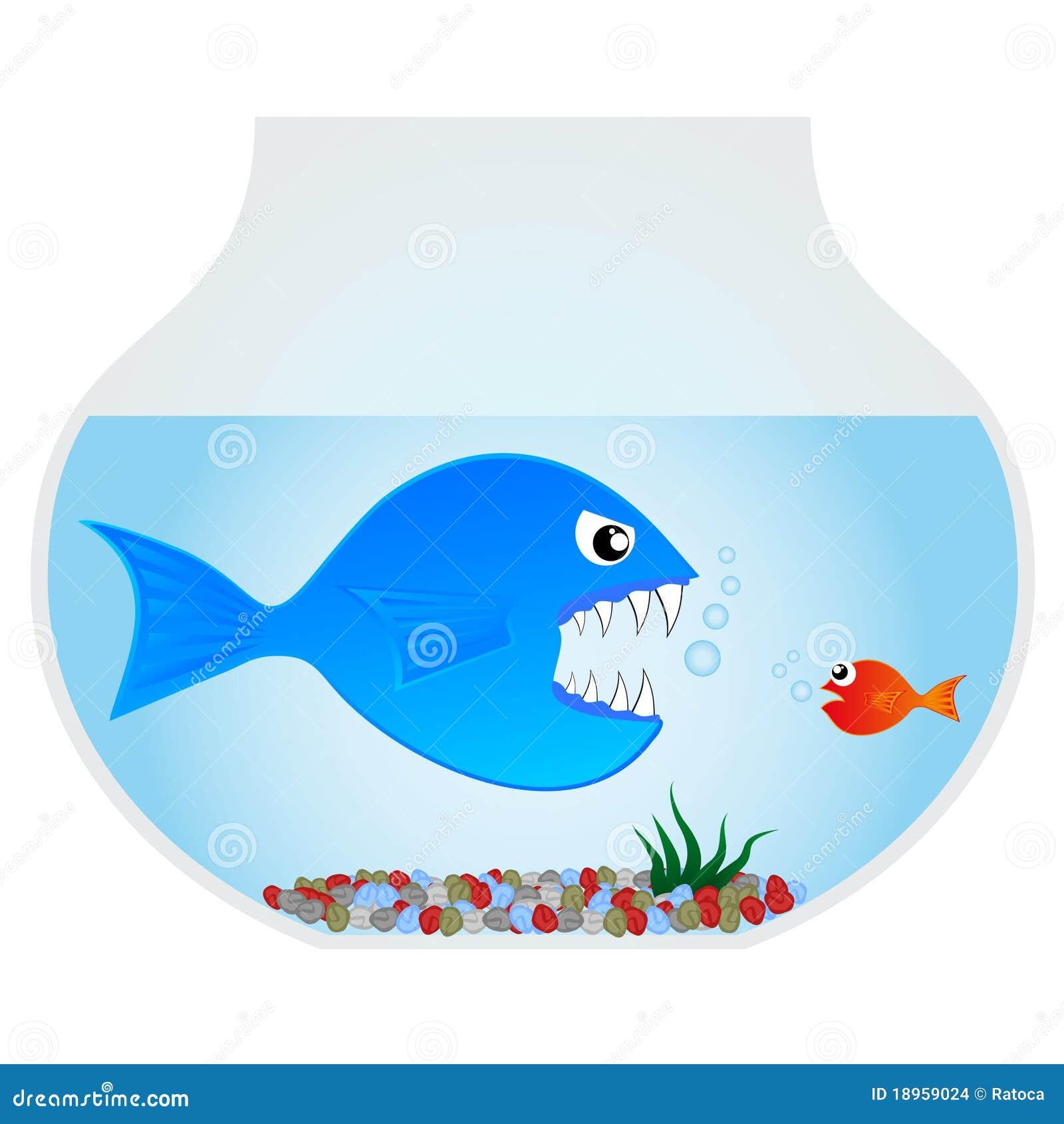 Big Blue Fish Stock Images Image 18959024