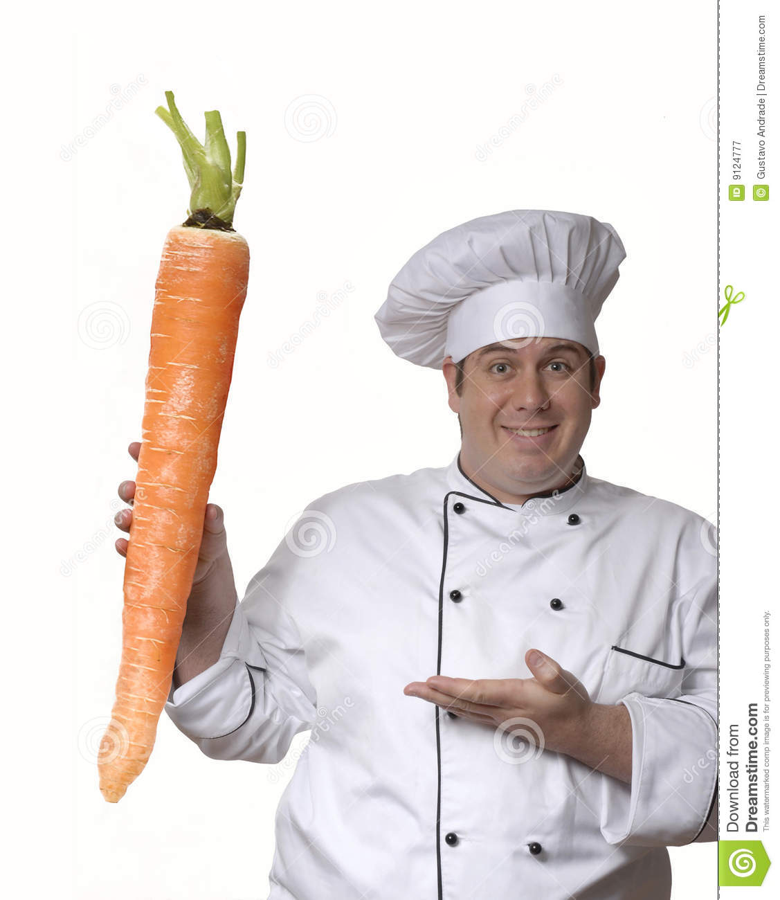 Big Carrot Royalty Free Stock Photography Image 9124777