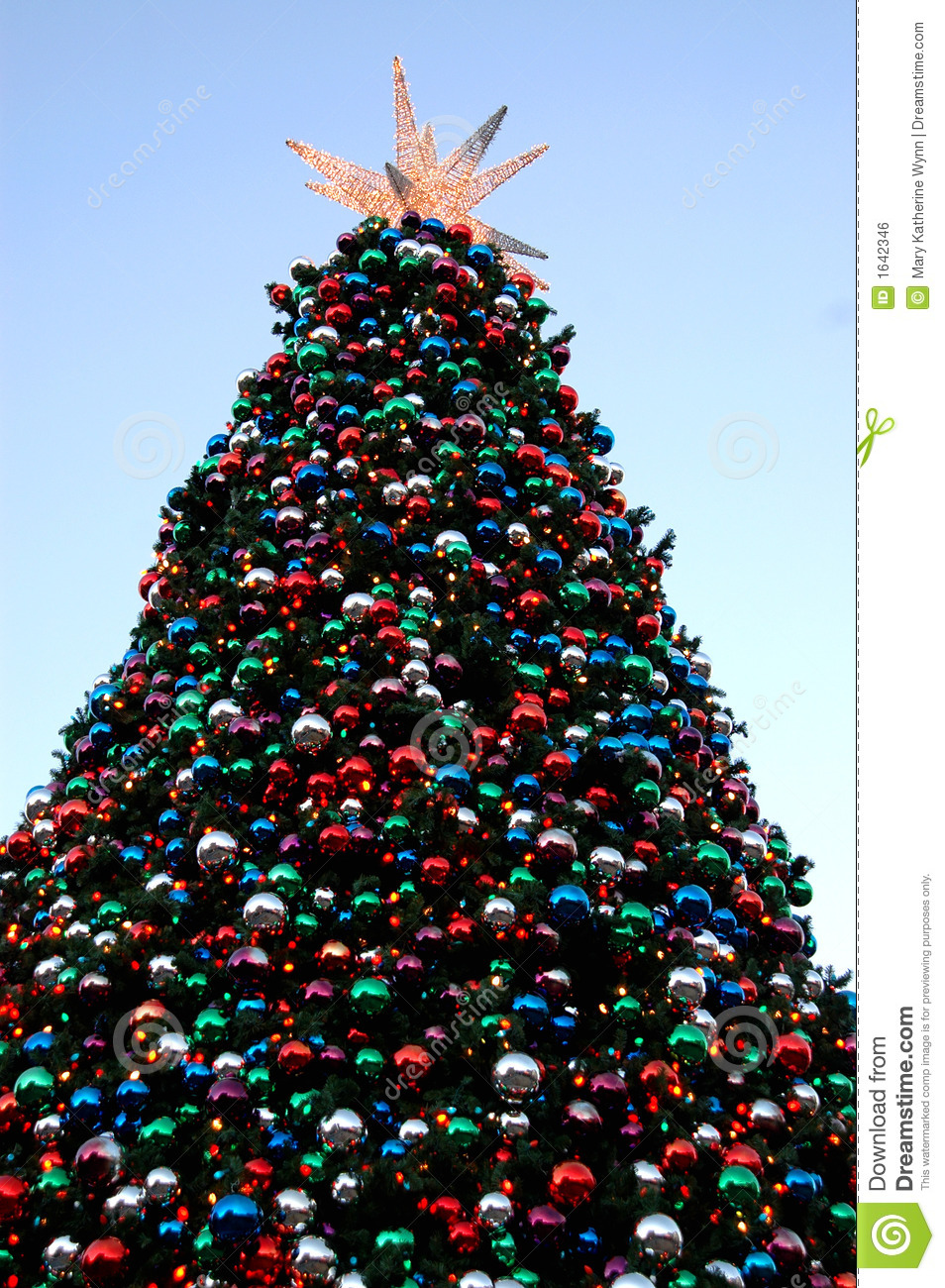Big Christmas tree stock photo. Image of xmas, tall ...