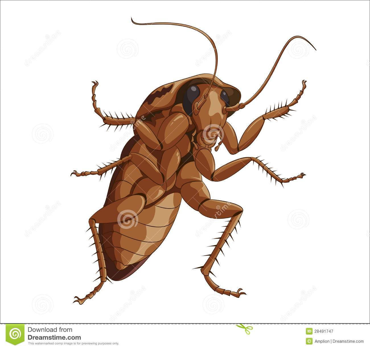 big-roach-28491747 Image Map Tool on facebook tools, geography tools, astronomy tools, hotel tools, food tools, gis tools, compass tools, multimedia presentation tools, road sign tools, art tools, survey tools, service tools, travel tools, information tools, drawing tools, drafting tools, web tools, surveyor tools, weather tools, search tools,