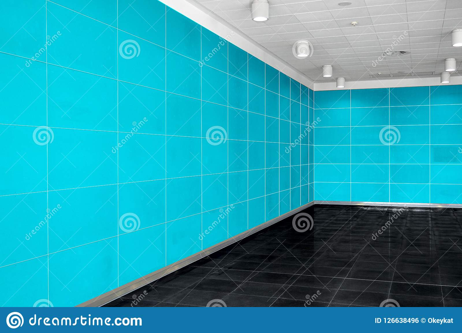 Big empty room interior with bright blue wall, whire ceiling and