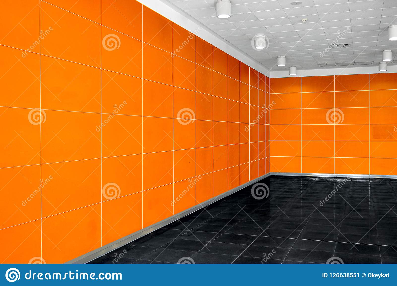Big empty room interior with bright orange wall, whire ceiling a