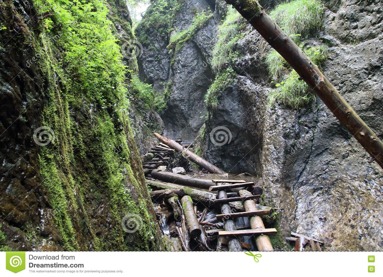 Big Falcon ravine, Slovak Paradise, Slovakia