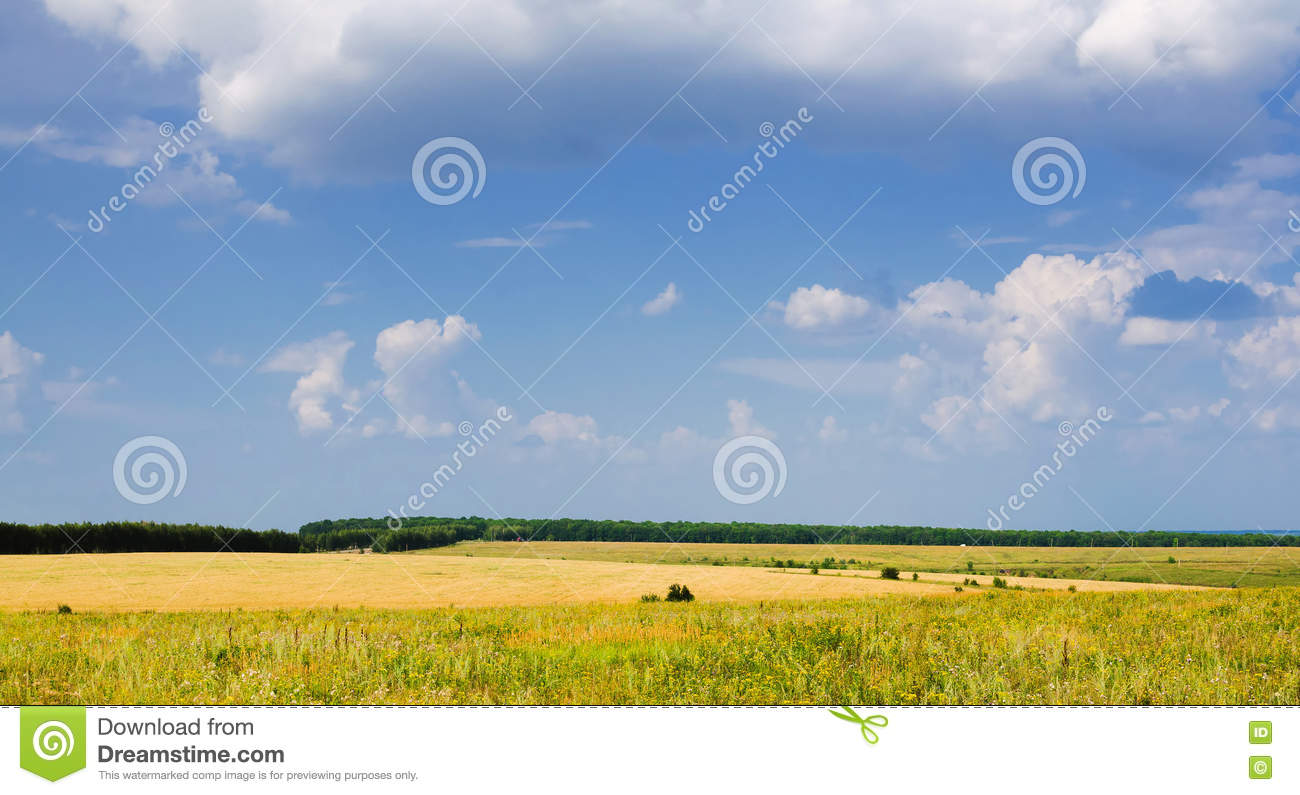 grass and sky backgrounds. Beautiful And Download Big Field Of Wild Grass On Sky Backgrounds Stock Photo  Image Of  Outdoors And