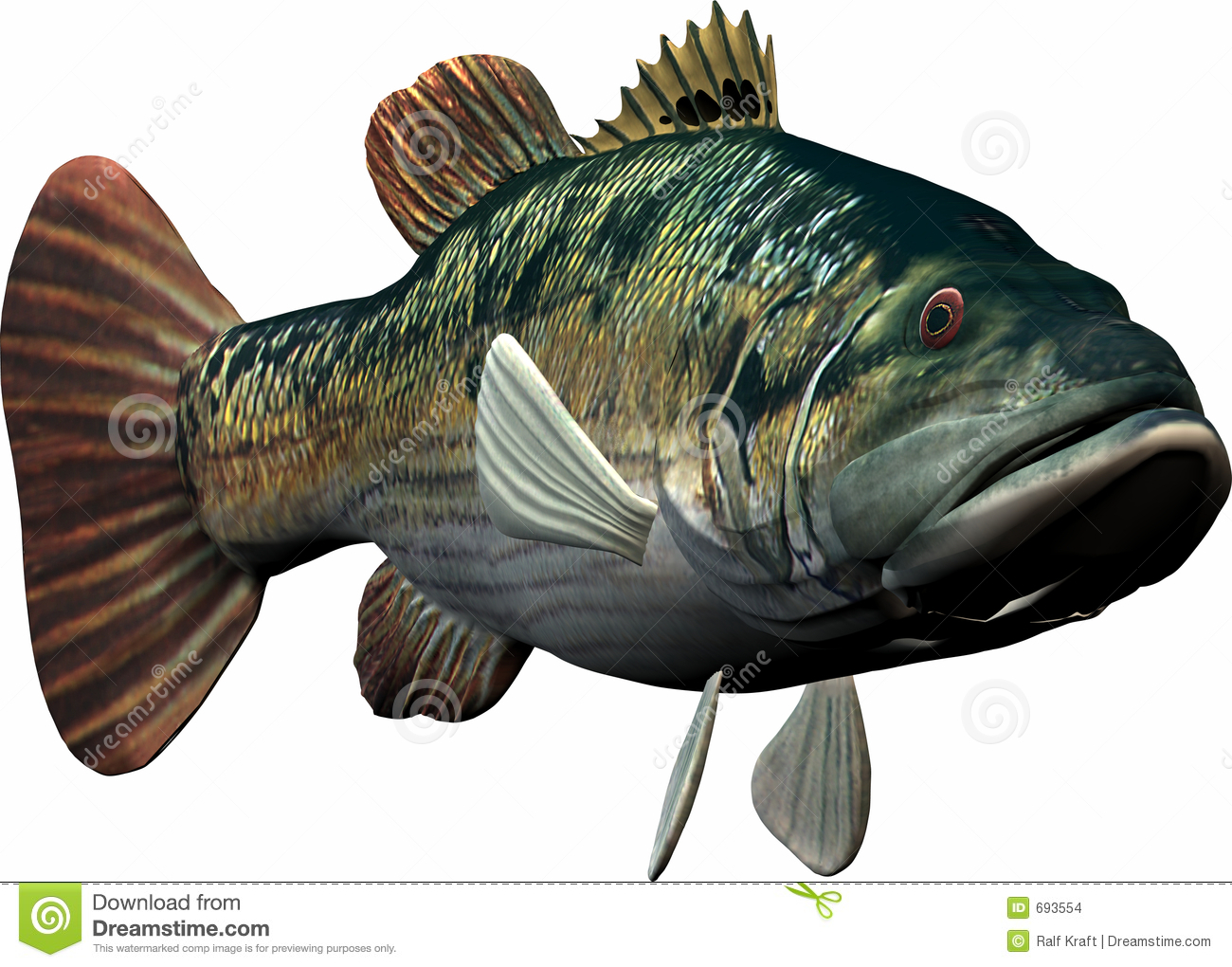 Big Fish Stock Images - Image: 693554