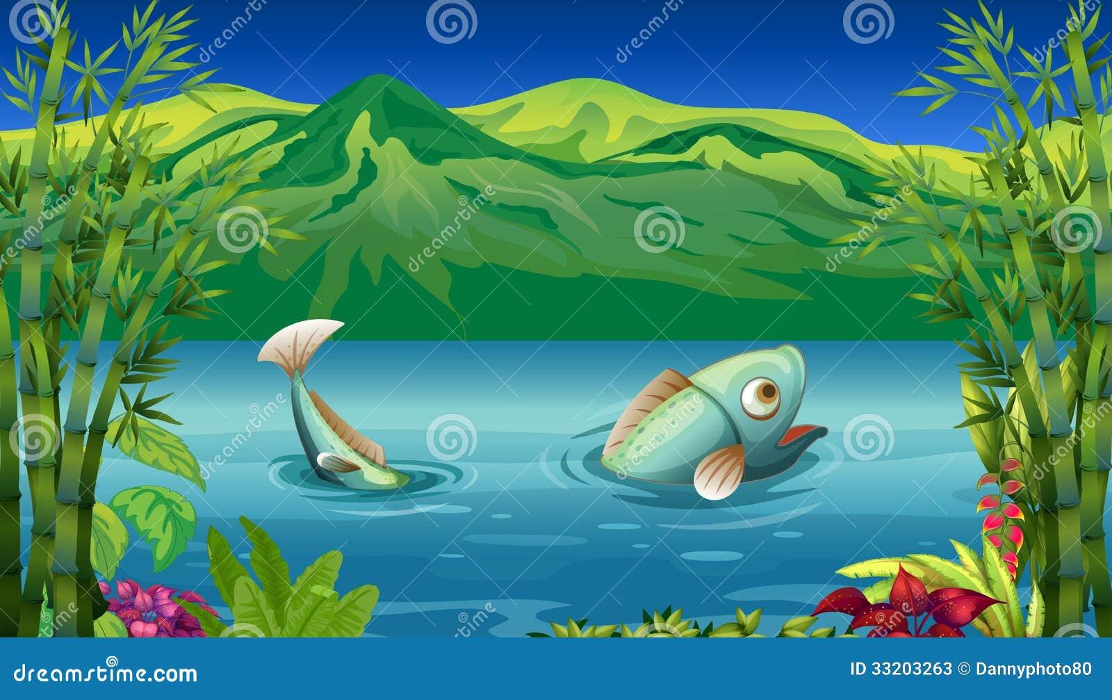 A big fish at the lake stock photos image 33203263 for Big fish lake