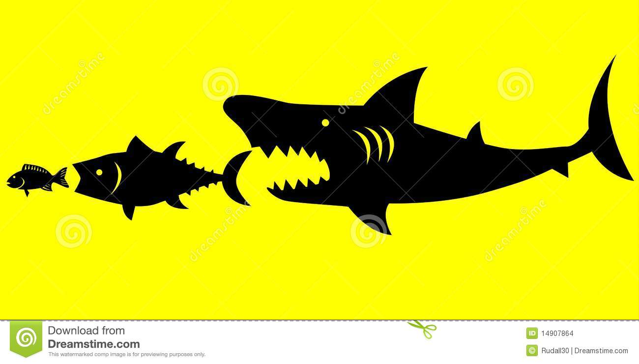 big fish prey on smaller fish stock vector illustration of bank