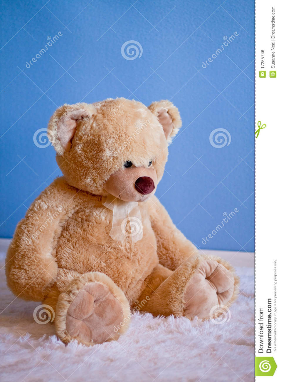 Hay Hay Chicken Stuffed Animal, Big Fluffy Teddy Bear In Front Of Blue Wall Stock Photo Image Of Precious Vertical 17255746