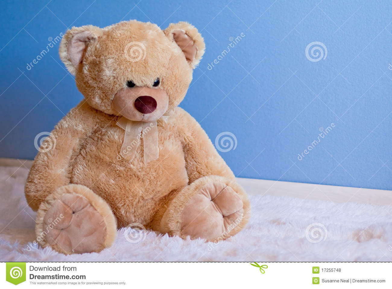Big Fluffy Teddy Bear In Front Of Blue Wall Royalty Free
