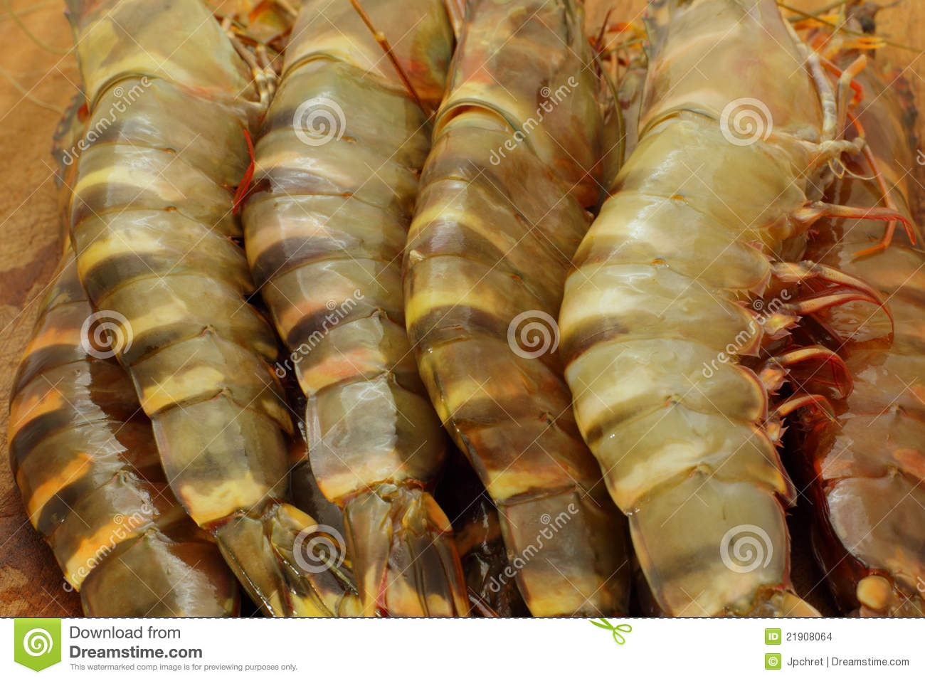 Big Fresh Tiger Prawns Stock Images - Image: 21908064