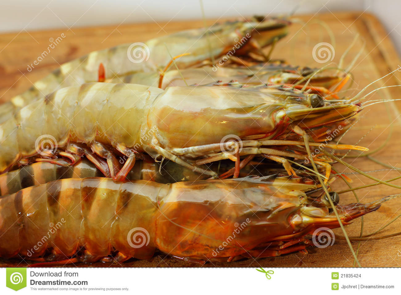 Big Fresh Tiger Prawns, Shrimp Stock Images - Image: 21835424