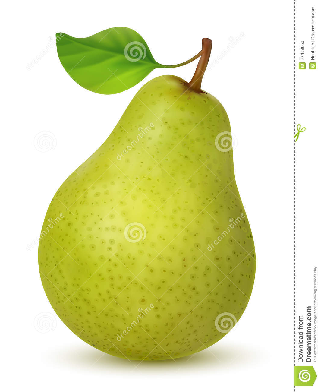 Big green pear on white background. Created using gradient meshes.