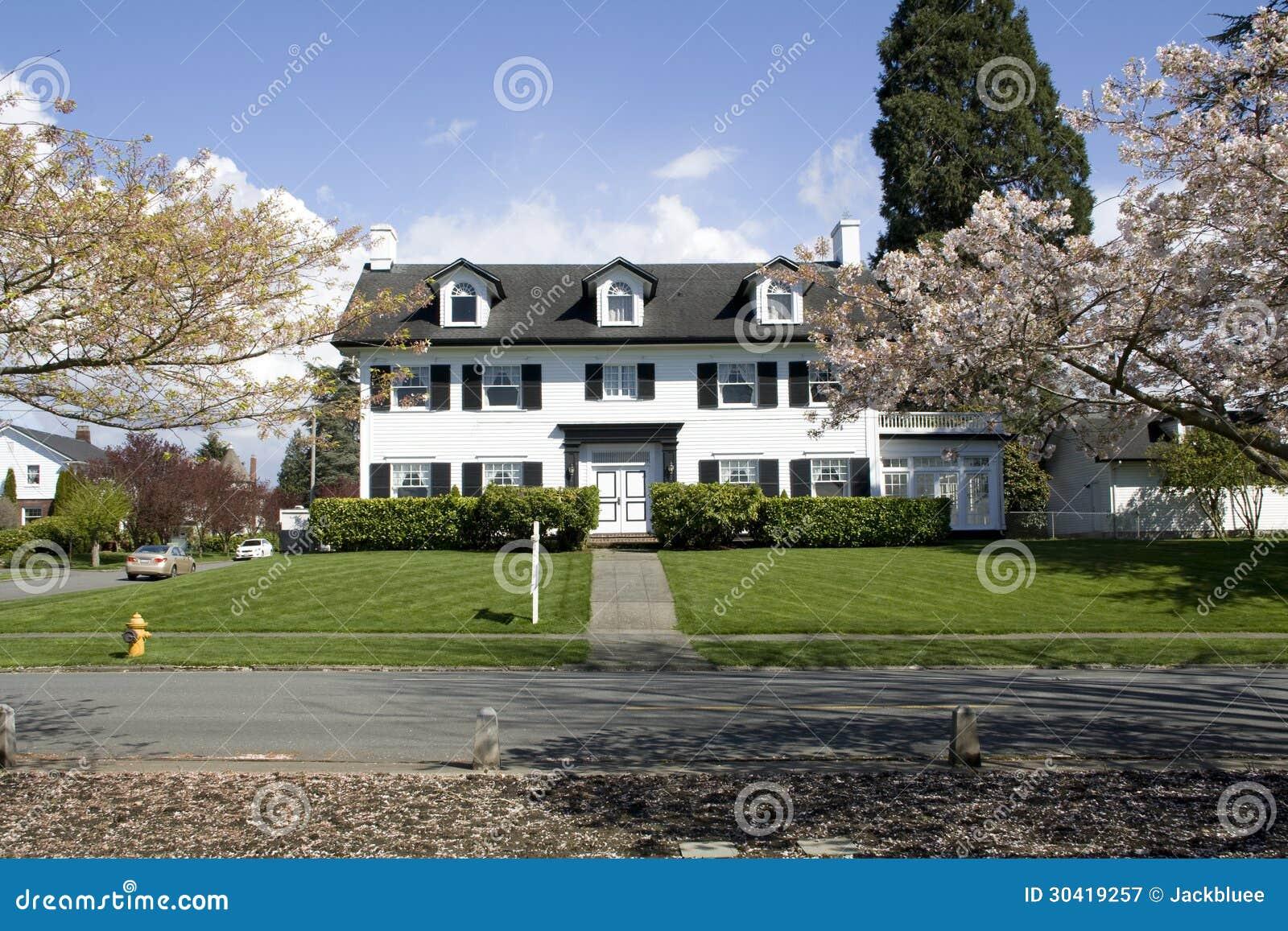 Big house with elegant designs