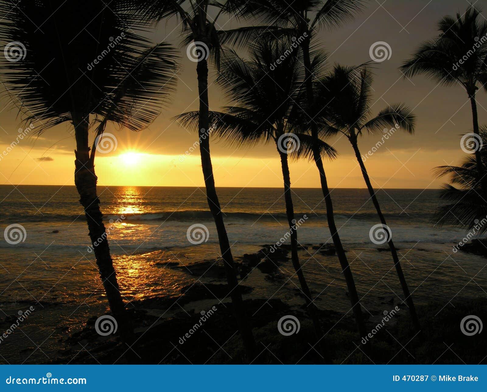 Download Big Island Sunset stock image. Image of beach, seas, coastline - 470287