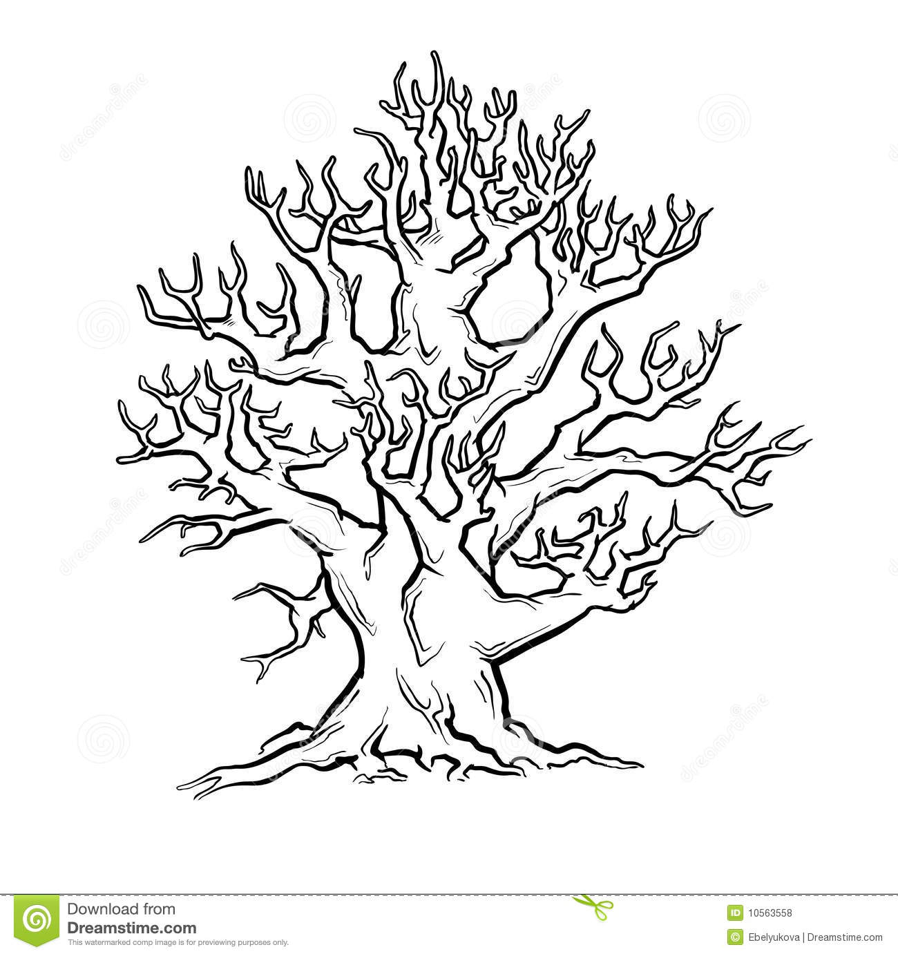 tree with face stock photo image 12768540