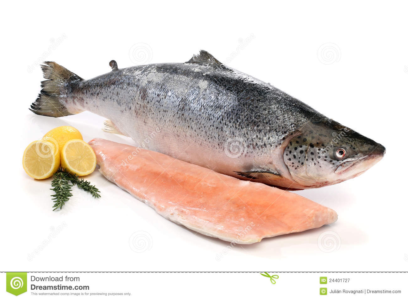 Big salmon fish and a fillet royalty free stock for Salmon fish images